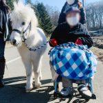 Heartland お馬さんと冬の散歩